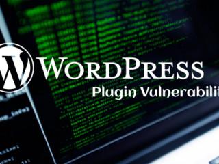 Plugin-Vulnerability